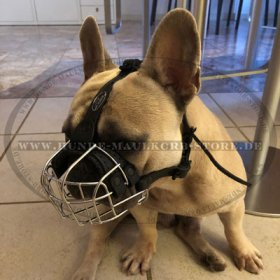 Wire Basket Dog Muzzle for French Bulldog