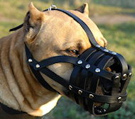 Amstaff Leather Dog muzzle with super ventilation