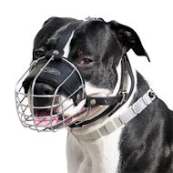 Wire Basket Dog Muzzle for Amstaff