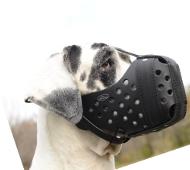 Deutsche Dogge | Beißkorb | Ledermaulkorb | für Angriffsarbeit
