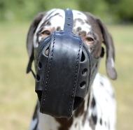 Maulkorb Leder für Dalmatiner | Beißkorb für Angriffsarbeit