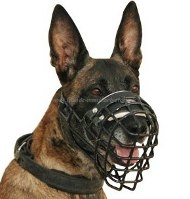 Belgian Malinois Wire Basket Dog Muzzle, covered by black ruber