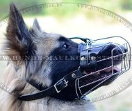 Dog Muzzle for Tervuren Breed, Universal and for Profis