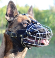 Wire Basket Dog Muzzle for Malinois, best offer!