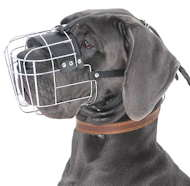 Extra Large Wire Basket Muzzle for Great Dane, Cage Dog Muzzle