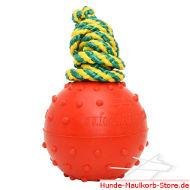 Sicherer Gummihundeball für Wasser Aktivitäten