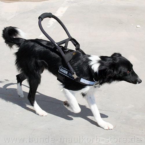 Brustgeschirr für Führhunde aus Nylon mit 2 Griffen