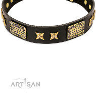 "FDT Artisan Lederhalsband ""Passion for Style and Beauty"""