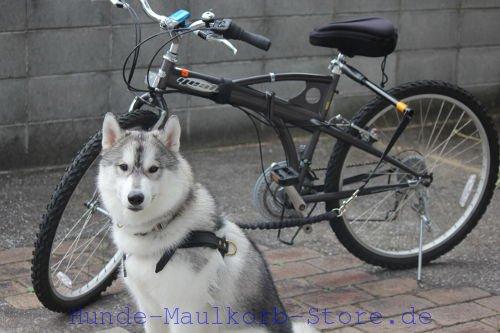 hund und das fahrrad der maulkorb hundemaulkorb beisskorb beisskorb drahtmaulkorb und. Black Bedroom Furniture Sets. Home Design Ideas