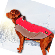Dog Winter Coat for Labrador | Raincoat for Dogs of Any Breed