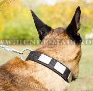Dog Collar with Decorative Chunks for Malinois