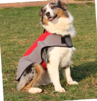 Hundemantel für Australian Shepherds | Wasserdicht + Fleece ❉