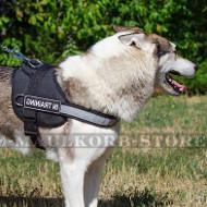 Laika Nylon Geschirr | Hundegeschirr mit Reflektierendem Band