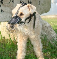 Wire Dog Muzzle for Lakeland Terrier, Bestseller