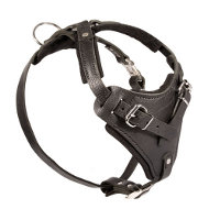 Leather Harness Padded | Harness K9 TOP QUALITY