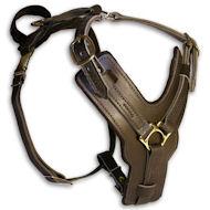 https://www.hunde-maulkorb-store.de/images/Luxury-Padded-Leather-Dog-Harness-hundegeschirr.jpg
