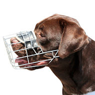 Wire Large Basket Dog Muzzle, the Best for Labrador