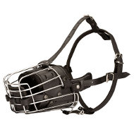 Wire Basket Dog Muzzle with Leather for Malinois & Large Breeds