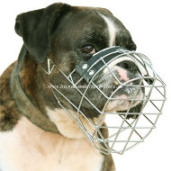 Wire Basket Dog Muzzle for Boxer