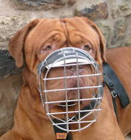 Large Wire Basket dog muzzle for large breeds, best design