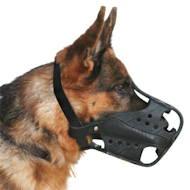 Hundehalsband as Leder dick mit Filz gepolstert