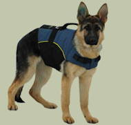 Nylon dog harness for tracking with handle for German Shepherd