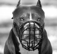 Wire Basket Dog Muzzle for American Pit Bull black rubber