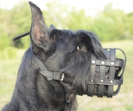 Muzzle Leather for Giant Schnauzer