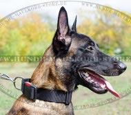 Sport Halsband für Hunde, universelles für Belgischen Malinois