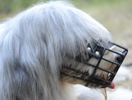 Wire Dog Muzzle for South Russian Ovcharka, Bestseller!