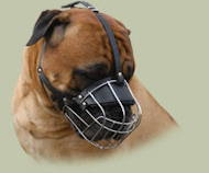 Large Wire Basket dog muzzle for large breeds, Bullmastiff