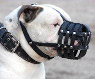 American Bulldog Everyday Light Weight Ventilation Dog muzzle