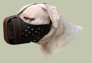 "American Bulldog Large breeds leather Dog Muzzle ""Dondi plus"""