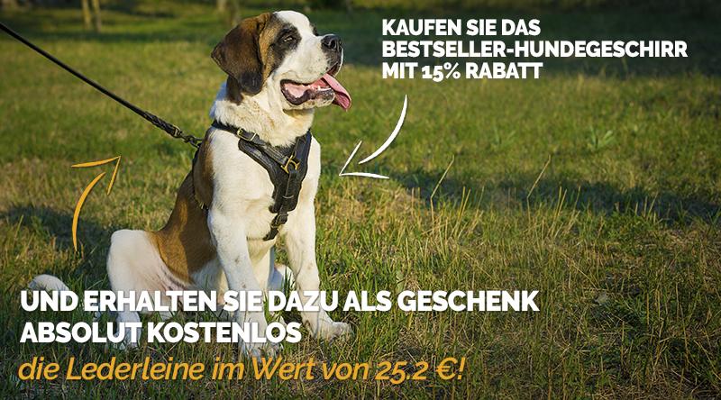 https://www.hunde-maulkorb-store.de/images/banners/Brustgeschirr-und-Leder-Hundeleine-Rabatt.jpg