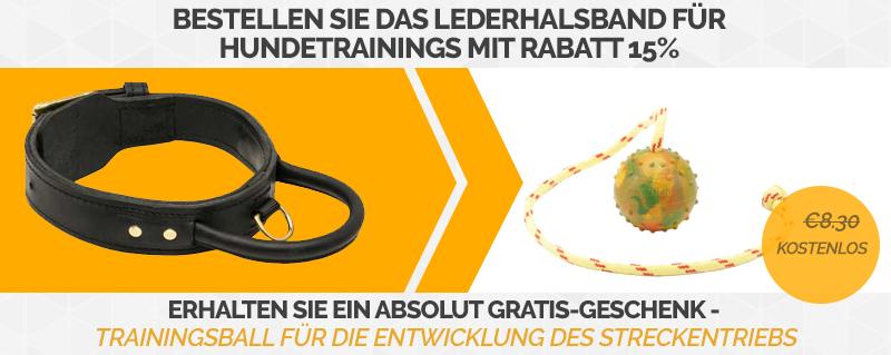 https://www.hunde-maulkorb-store.de/images/banners/C33+TT1-Angebot.jpg