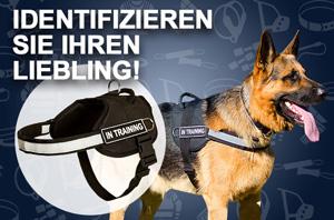 https://www.hunde-maulkorb-store.de/images/banners/H6P-Hundegeschirr-Nylon-fuer-Servicehund.jpg