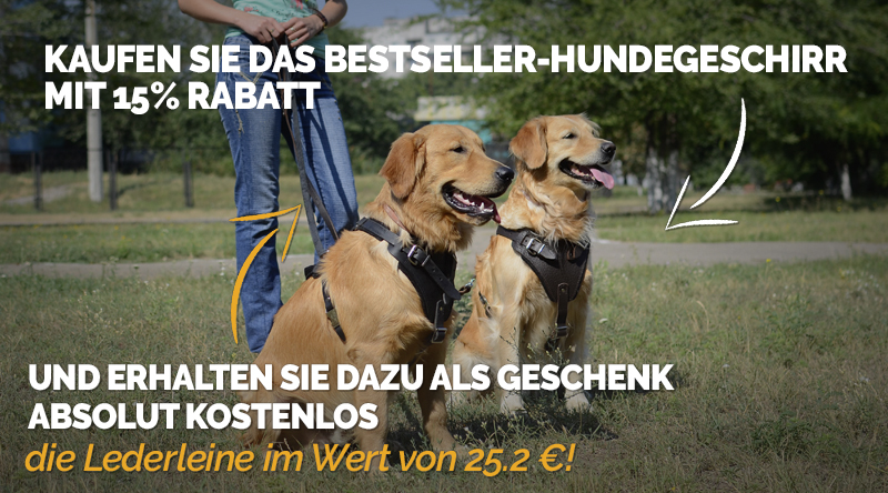 https://www.hunde-maulkorb-store.de/images/banners/Product+Gift_Banner-Header-with-dog-H1-L320-de.jpg