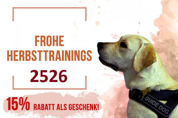 Zubehör für Hund Rabatt