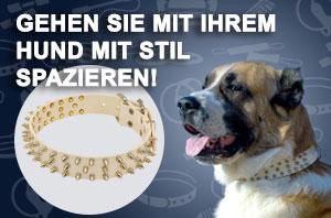 https://www.hunde-maulkorb-store.de/images/banners/Weisses-Hund-Halsband-S44W.jpg