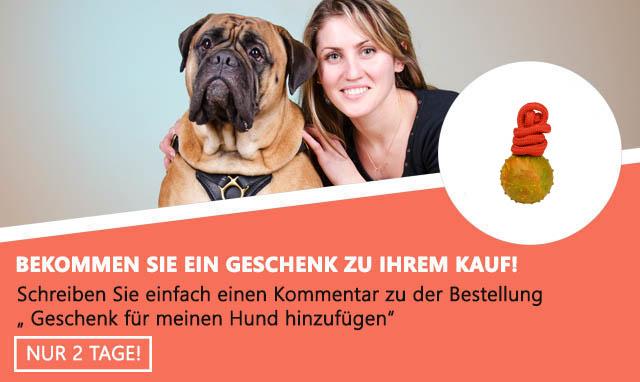 Geschenk zur Bestellung- Hundeball
