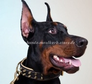 Spiked Collar Exclusive | Doberman Collar Leather, Nappa