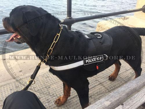Langgliedrige Halskette aus Messing für große Hunde