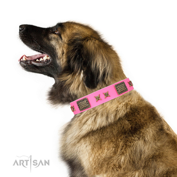 Lederhalsband mit Design am Leonberger