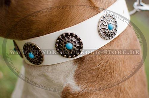 Weißes Lederhalsband mit schönen Nieten und Blauen Steinchen