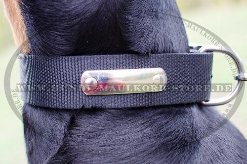 Hundehalsband mit Namensschild