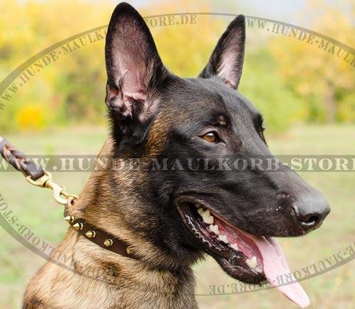 20 mm Lederhalsband mit Spikes für große Hunderassen