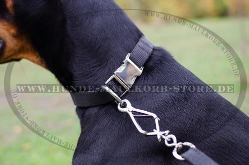 Hundehalsband mit Klickverschluss aus Stahl