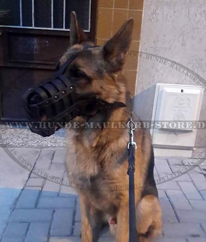 Stilvolle Hundeleine aus Leder für Hundesport und Diensthunde