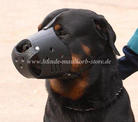 Geschlossener Hundemaulkorb