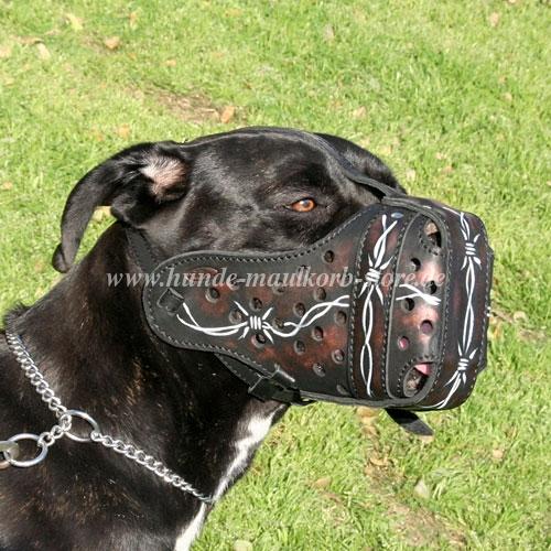 Hunde Halskette mit kleinen Gliedern im Training